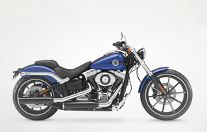 SOFTAIL FAMILY